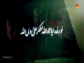 [02 Nauha 2016] Noor e Khuda Ya SaarAllah - Shuja Rizvi - Muharram 1438- Urdu