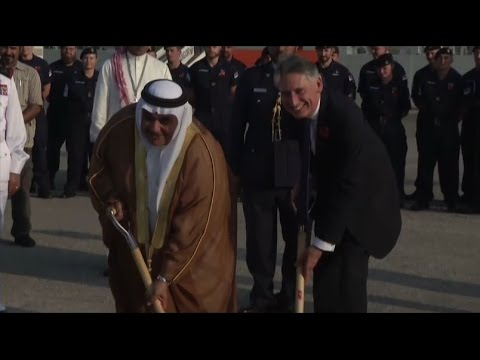 [22 November 2016]  Amnesty slams UK for supporting Bahrain regime | Press TV English