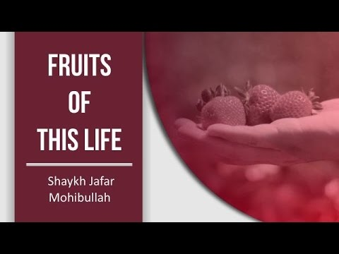 Fruits of this Life | Shaykh Jafar Mohibullah | English