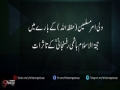 ولی امر مسلمین(حفظہ اللہ) کے بارے میں حجة الاسلام ہاشمی رفسنجا