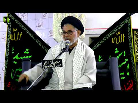 [08] Topic: Seerat-e-Anbiya - سیرت انبیاء  | H.I Hasan Zafar Naqvi - Muharram 1439/2017 - Urdu