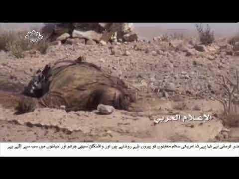 [03Nov2017] یمن میں سعودی اتحادیوں کے دسیوں فوجیوں کی ہلاکت  - Urdu