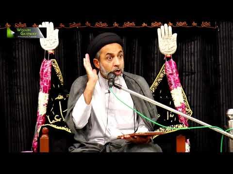 [5] H.I Syed Muhammad Haider Naqvi | Safar 1439/2017 - Urdu