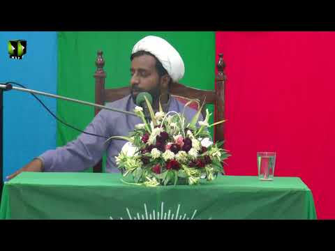 [Youm e Mustafa (saww)] Speech: Moulana Hayyat Abbas | 1439/2017 - Urdu