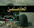 اتحاد مسلمین؛ اسرائیل کی نابودی کی ضمانت | Farsi sub Urdu