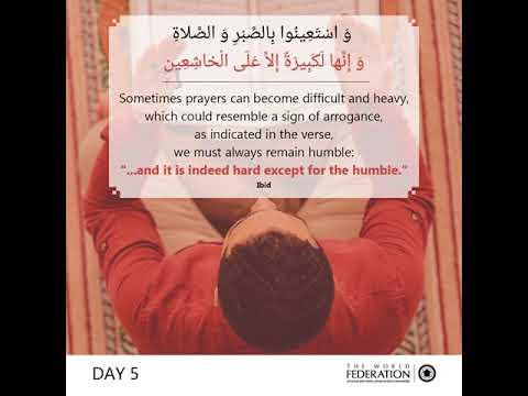 Day 5# Feedyoursoul series - English