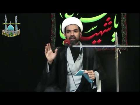 CLIP   علی(ع) کا طرزِ زندگی   Maulana Mehdi Abbas   Urdu