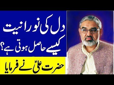 [Clip] Dil ki nooraniyat kaise || Allama Syed Ali Murtaza Zaidi - Urdu