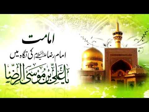 [Clip] Imamat, Imam Reza (as) Ke Nigah May | Moulana Mubashir Haider Zaidi - Urdu
