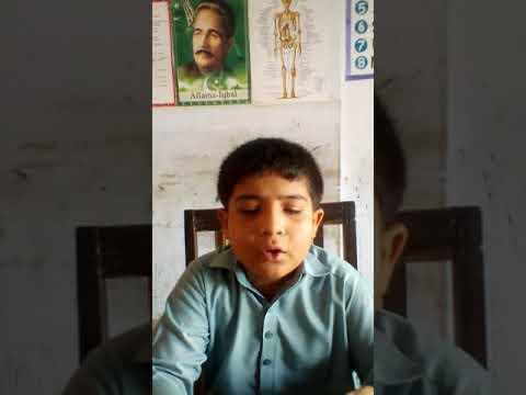 [Hidayat Quran PIV] | Translation of 10 Ayats | Muhammad Mohsin Mehdi | Sindhi