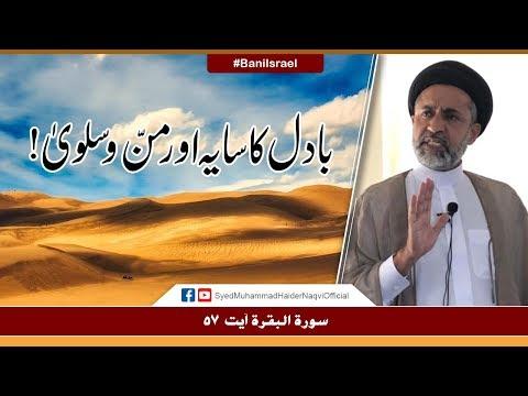 Badal Ka Saya Aur Mann-o-Salwa! || Ayaat-un-Bayyinaat || Hafiz Syed Muhammad Haider Naqvi - Urdu
