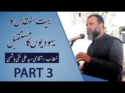 Discussion About Palestine & Israel Future || Syed Ali Naqi Hashmi || Part 3 - Urdu