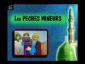 Les peches mineurs - Francais French