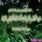 نور احکام 5 - توضیح المسایل Persian ربا