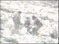 The Child Is Calling From Palestine!!! Clip AlManar TV - English Sub Arabic