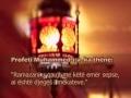 Ramazani dhe ne - Hadithe nga Profeti (S) dhe Ehlibejti (A) - Albanian