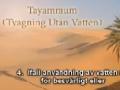 Hur man gör tayammum - Swedish