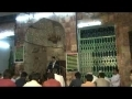 Ramazan 7 - Majlis 2 - Maah-e-Ramazan Aur Kamyab Zindagi Kay Aadaab - Urdu - AMZ