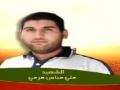 Shuhada2 Hizbollah 3ali [All Languages]