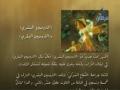 حقائق قرآنية - نظام الشرايين عند الإنسان Human Arterial System - Arabic