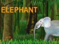 Alphabets - [E] is for Elephant - English