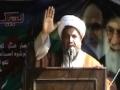 H.I. Raja Nasir Abbas Islamabad Labaik ya Hussain(as) - Urdu