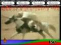 [09] Muharram 2007 - Kahan Ho - ISO Pakistan Noha - Urdu