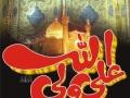 SIRF EK BAR DIL MURTAZA a.s. KO TU PUKAAR - Urdu