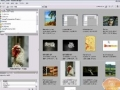Adobe Bridge Tutorial Learn the basics of the Bridge - English
