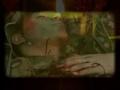 Blood Glorified Nation -  Video Arabic