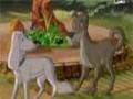 مسلسل قصص الحيوان فى القران - الحلقة 26 - Arabic