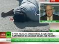 CIA death squads behind Syria bloodbath - Webster Tarpley - Nov 21, 2011 - English