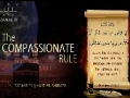 Words of Wisdom | The Compassionate Rule (Valayat ul Faqeeh) - English