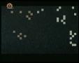 [20] سیریل ٹہوکہ - Serial Talangor - Thoka - Flip - Urdu