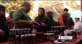 [31 Oct 2012] Iran, largest producer of pomegranate - English
