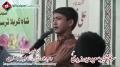 [سویم شہیدسعید حیدر زیدی] Noha Br. Ahmed Nasiri - Ali Ali Akbar - 13 Nov 2012 - Urdu