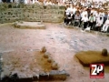 [Ali Deep Rizvi Noha Muharram 1434] بنت رسول اکرم - Urdu
