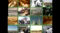 [48] Documentary - History of Quds - بیت المقدس کی تاریخ - Dec.03. 2012 - Urdu