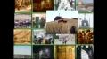 [50] Documentary - History of Quds - بیت المقدس کی تاریخ - Dec.05. 2012 - Urdu