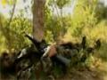 Shaheed AL-Hussein (HD) | نشيد شهيد الحسين - قناة المنار - Arabic