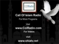 23 Islamic Economy by Hujjatul islam Mohammed Khalfan - Call of Islam Radio - English