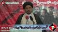 [Majlis Barae Bulandi e Darjat Shaheed Ustad Sibte Jaffer] Speech - Maulana Nadir Abbas - 30 March 2013 - Urdu