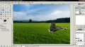 GIMP - Adding A Lion In A Green Grass Field - English