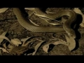 toad piosions medical snake-english