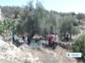 [17 Nov 2013] israeli army to seize Palestinian farmers land - English