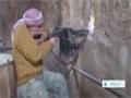 [10 Dec 2013] Syrian army is shaking the self-confidence of western-backed insurgent groups - English
