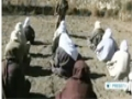 [26 Dec 2013] Pakistani locals opposed to military operation in N Waziristan - English