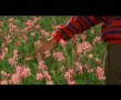 The Color Of Paradise - Part V - Majid Majidi - Movie - Farsi with English sub