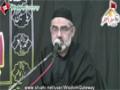 [01] 17 Safar 1435 - Deeni Kamiyabi Aur Qaumi Shaour - H.I Murtaza Zaidi - Jaffare Tayyar - Urdu