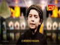 (حصرياً: يا حسين حبيبي الطفل عمار الحلواجي في صحن الحسين (ع - Arab